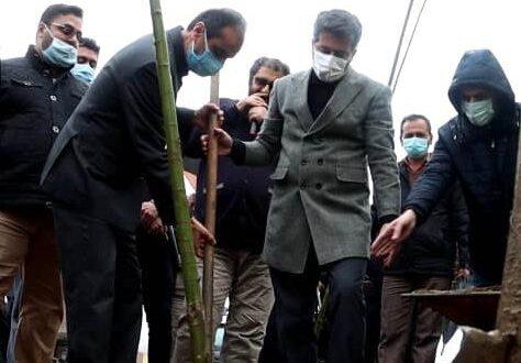 شهردار رشت خبر داد: شهرداری رشت ۵۰۰۰ اصله نهال را در سطح شهر توزیع میکند